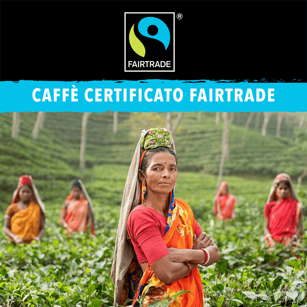 6 Caffè Fairtrade King Cup