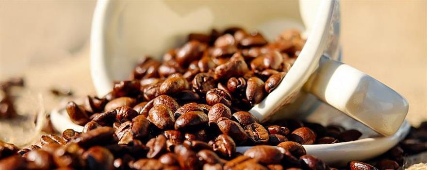 caffè-biologico